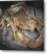 Saddle Sore #2 Metal Print