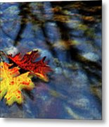 Safe Passage Metal Print