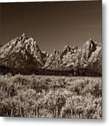Sagebrush And Tetons Metal Print