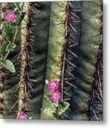 Saguaro Cactus And Wildflowers Metal Print