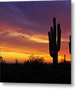 Saguaro Sunset II  Metal Print