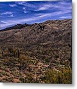 Saguaro View No.1 Metal Print