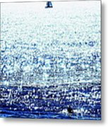 Sailboat And Swimmer Metal Print by Brian D Meredith