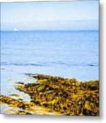 Sailboat Off The Ovens Metal Print
