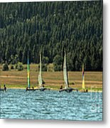 Sailboat Regatta Cascade Lake Metal Print