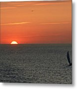 Sailing From The Sun Metal Print