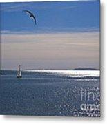 Sailing On Christmas Ventura Harbor Metal Print