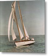 Sailing, One Of The Many Sports Metal Print