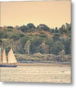 Sailing The Shoreline Metal Print
