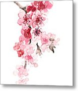 Sakura Flowers Watercolor Art Print Painting Metal Print