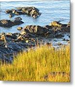 Salem Coastline Metal Print