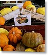 San Joaquin Valley Squash Display Metal Print