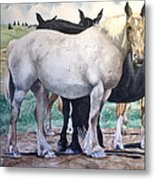 Sally's Horses Metal Print