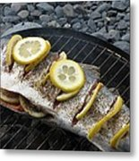 Salmon For Supper Metal Print