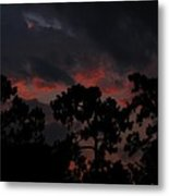 Salmon Sunset Metal Print