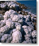 Salt Formations On The Shores Of The Metal Print