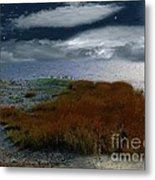 Salt Marsh At The Edge Of The Sea Metal Print by RC DeWinter