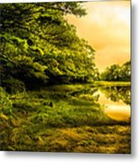 Salt Marsh Kittery Maine Metal Print