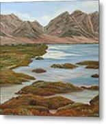 Salt Marsh Metal Print