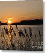 Salt Marsh Sunset Metal Print