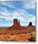 Saluting Sentinels Metal Print