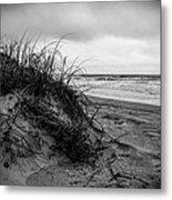 Sand Dune Metal Print