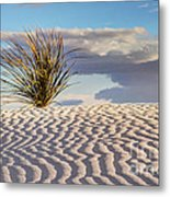 Sand Patterns And The Yucca Metal Print