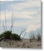 Delaware Sand Dune Metal Print