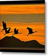 Sandhill Crane At Sunset Metal Print