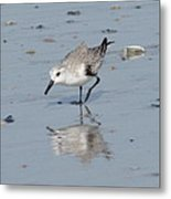 Sandpiper Reflection Metal Print