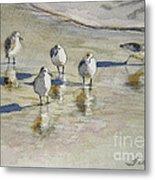 Sandpipers 2 Watercolor 5-13-12 Julianne Felton Metal Print
