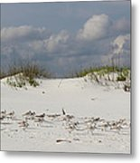 Sandpipers On Dune Metal Print
