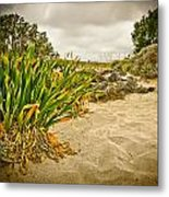 Sands And Grass Of Elafonisi Metal Print