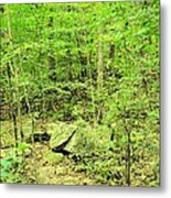 Sandstone Glade Of Shades Mountain Metal Print