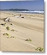 Sandy Beach On Pacific Ocean In Canada Metal Print