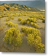 Sangre De Cristo Mountains At Great Metal Print