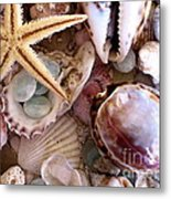 Sanibel Shells Metal Print