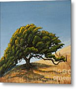 Santa Clara Valley Metal Print