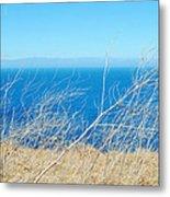 Santa Cruz Island Sea Of Grass Metal Print
