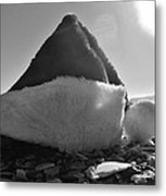 Santa Hat And Shells 2 12/17 Metal Print