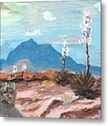 Santa  Rita Mts. Near Tucson Arizona Metal Print