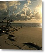 Sapelo Sunrise Metal Print
