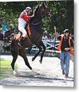 Saratoga Race Track Paddock Metal Print