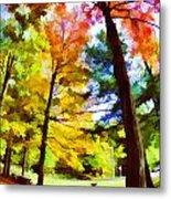Saratoga Tree Metal Print