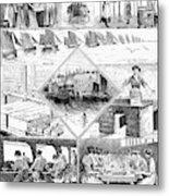 Sardine Fishery, 1880 Metal Print