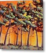 Sardis Pines Metal Print