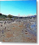 Sausalito Beach Sausalito California 5d22696 Artwork Metal Print