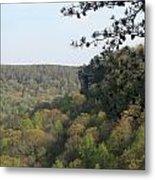 Savage Gulf Tennessee State Park Iv Metal Print