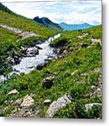 Savage River From Savage River Trail In Denali Np-ak    Metal Print
