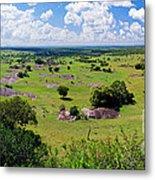 Savanna Landscape In Serengeti Metal Print